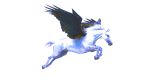 Le guide Pegasus Mail